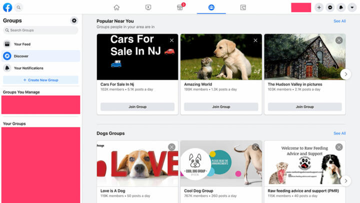 A screenshot of Facebook's group recommendation page